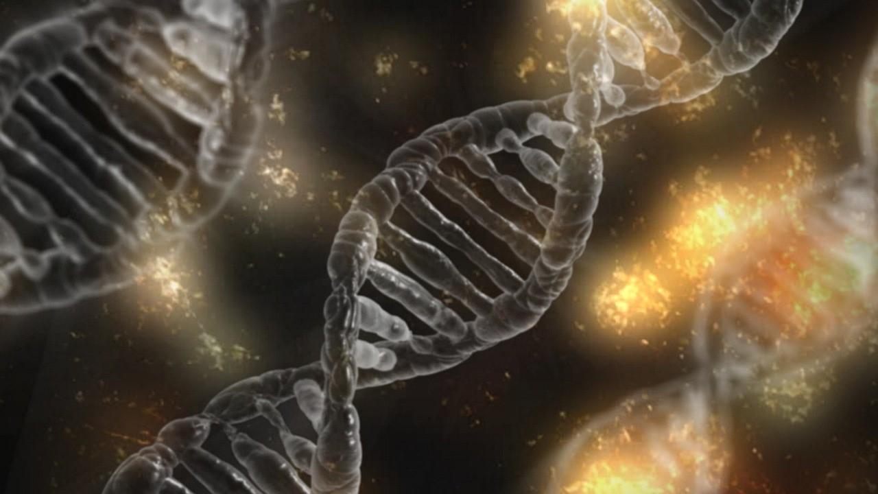 Distribuce výrobků pro molekulární biologii