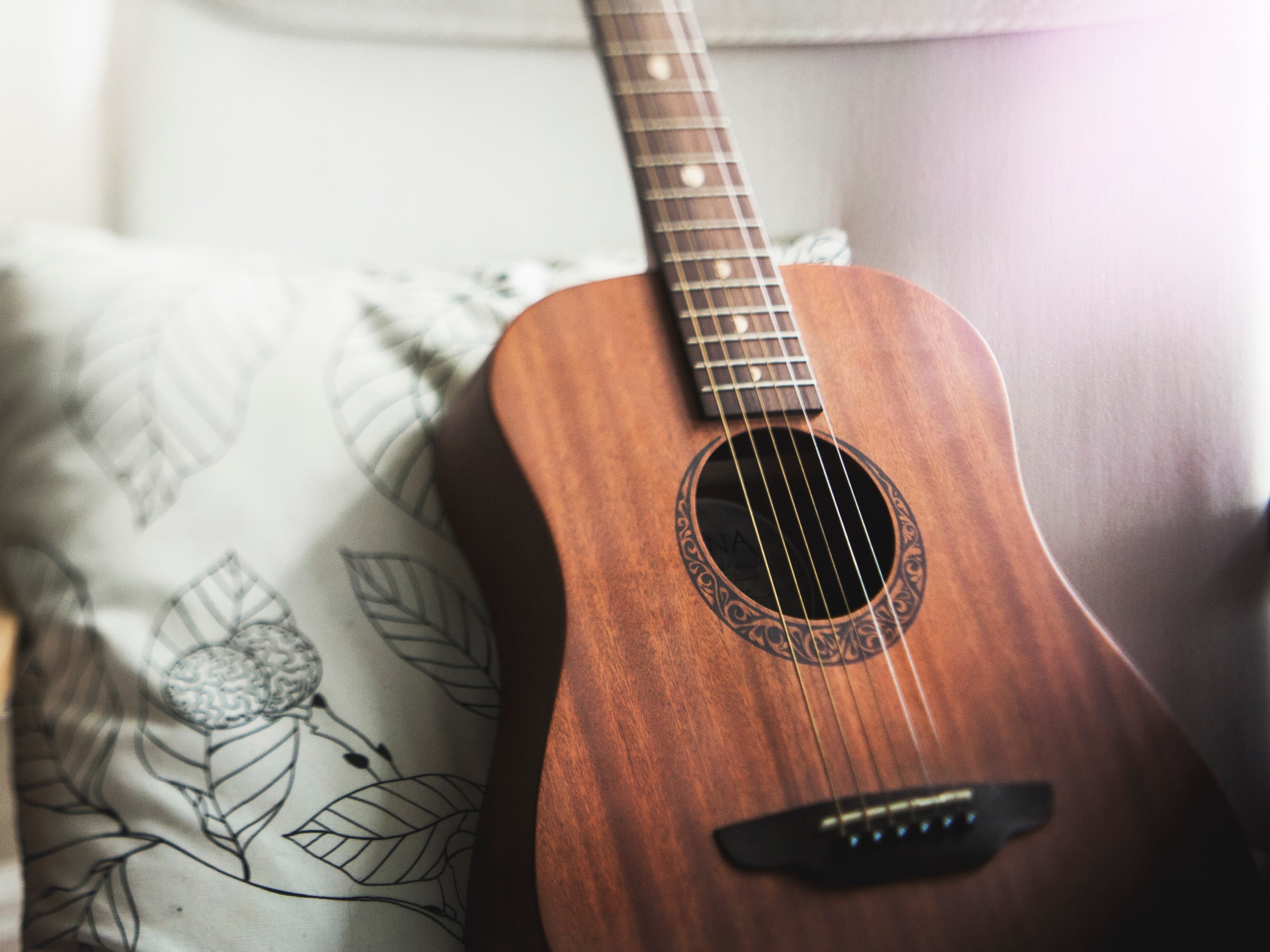 Předchůdce kytary zmiňuje i Bible