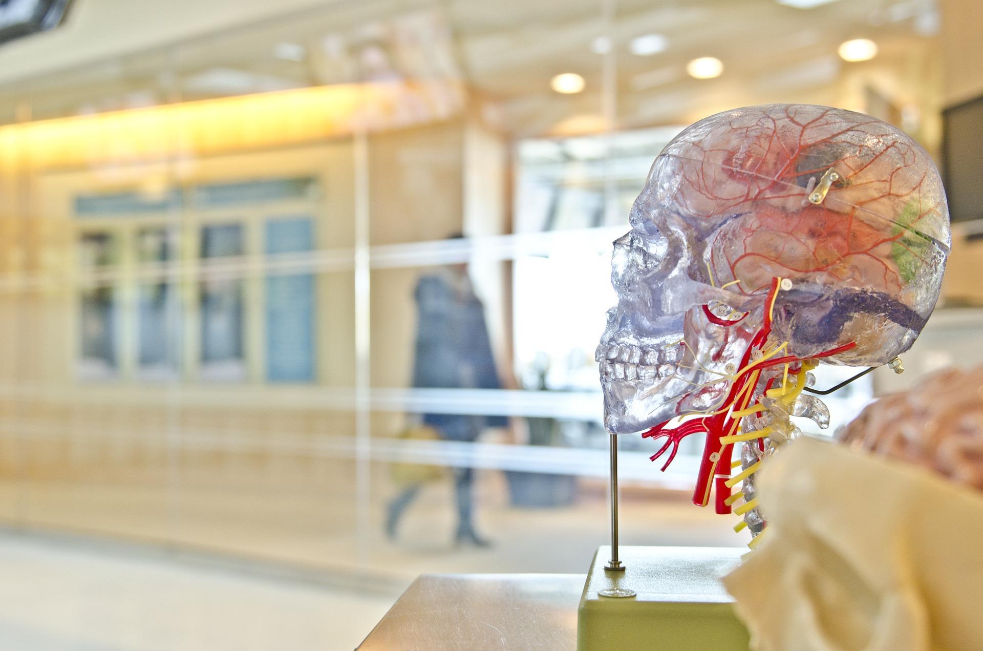 Co vás čeká u neurologa